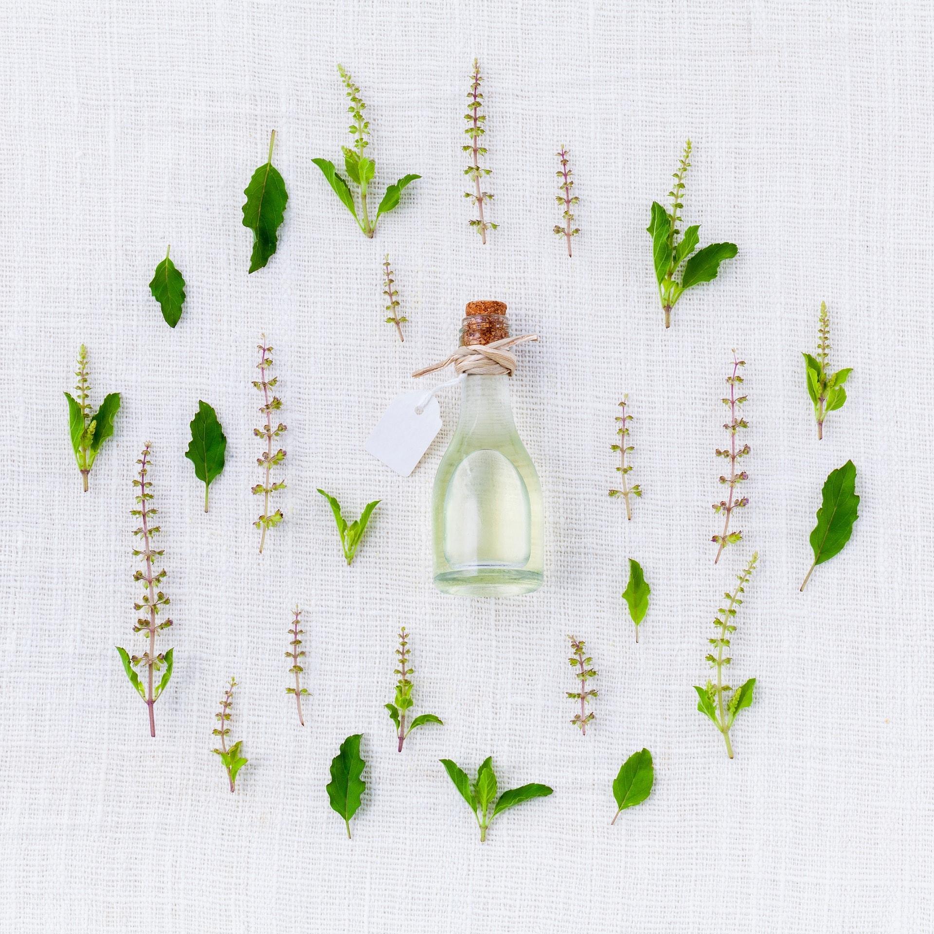 Lexique – les ingrédients dans les produits de beauté